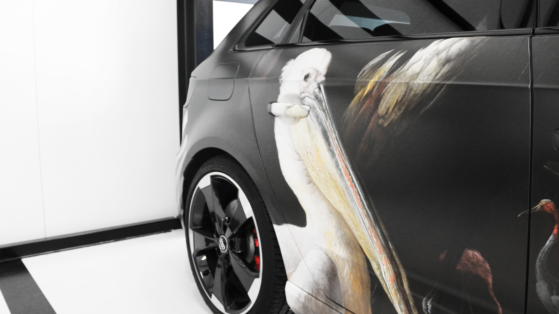 Audiwrap-pelikaan-rijksmuseum
